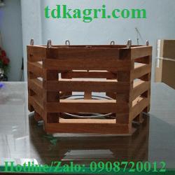 Chậu gỗ trồng lan lục giác 3