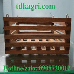 Chậu gỗ trồng lan vuông