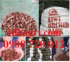Giá thể trồng lan vỏ thông kiwi 1