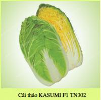 Hạt giống CẢI THẢO KASUMI F1 TN302