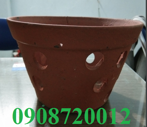 chậu đất nung trồng lan 1