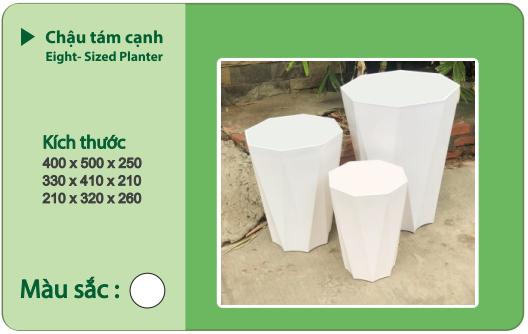 Chậu nhựa trồng cây CHẬU 8 CẠNH
