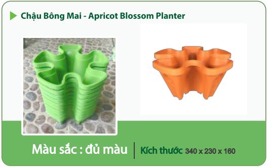 Chậu nhựa trồng cây CHẬU BÔNG SEN 1