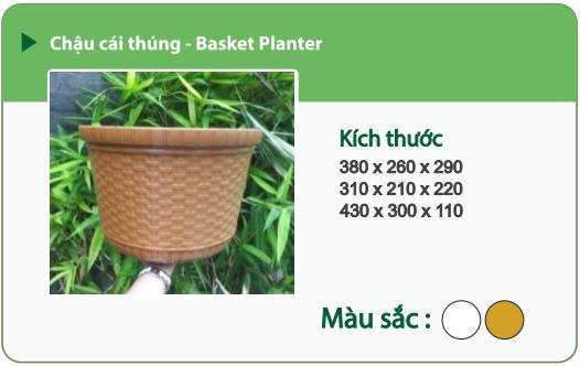 Chậu nhựa trồng cây CHẬU CÁI THÚNG