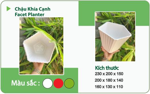 Chậu nhựa trồng cây CHẬU KHÍA CẠNH