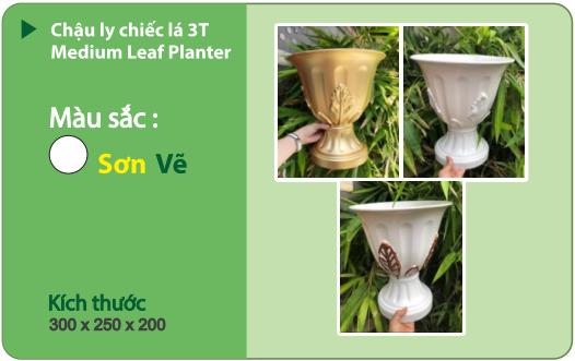 Chậu nhựa trồng cây CHẬU LY CHIẾC LÁ 3T