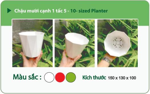 Chậu nhựa trồng cây CHẬU MƯỜI CẠNH 1 TẤC 5