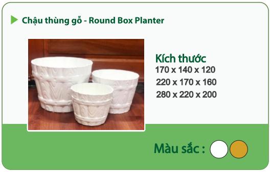 Chậu nhựa trồng cây CHẬU THÙNG GỖ