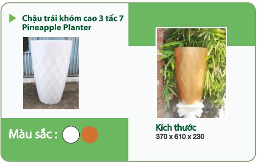 Chậu nhựa trồng cây CHẬU TRÁI KHÓM CAO 3 TẤC 7