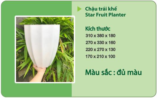 Chậu nhựa trồng cây CHẬU TRÁI KHẾ
