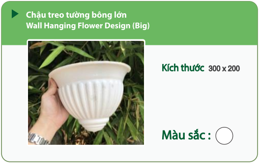 Chậu nhựa trồng cây CHẬU TREO TƯỜNG BÔNG LỚN