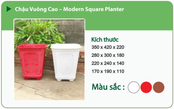 Chậu nhựa trồng cây CHẬU VUÔNG CAO
