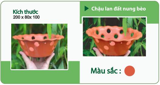 Chậu nhựa trồng hoa CHẬU LAN ĐẤT NUNG BÈO