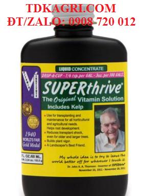 Kích thích tăng trưởng cho Lan SuperThrive